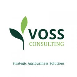 Logo Voss Consulting