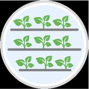 Icon Vertical Farming
