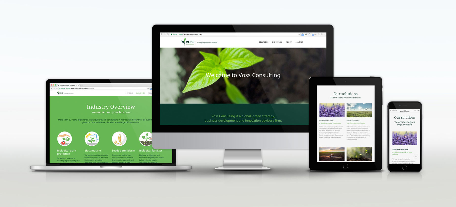 Voss Consulting Website Mockup